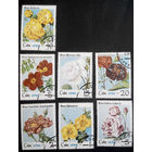 Куба 1979 г. Розы. Флора, полная серия из 7 марок #0071-Ф1