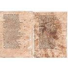 Два листа  с книги 16 века пергамент подлинник!