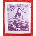 Польша. Спорт. ( 1 марка ) 1955 года.