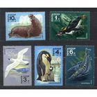Фауна Антарктиды. 1978. Полная серия 5 марок. Чистые.