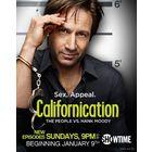 Блудливая Калифорния / Californication. 1.2.3.4.5.6 сезоны полностью. Озвучка Novafilm. Скриншоты внутри.