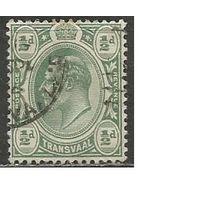 Трансваль. Король Эдуард VII. 1905г. Mi#131.