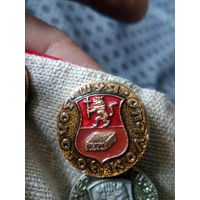 Значок СССР. Золотое кольцо. Шуя.