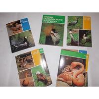 Набор открыток СССР, Птицы Московского зоопарка