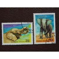Танзания 1991г. Фауна.