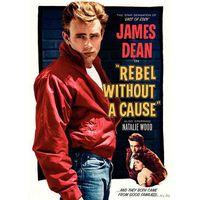 Бунтарь Без Причины / Rebel Without a Cause (Джеймс Дин,Натали Вуд) DVD-5