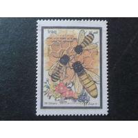 Ирак 1999 Пчелы