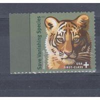 [355] США 2011. Фауна.Дикие кошки.Тигр.