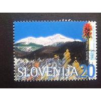Словения 1997 горы, цветы