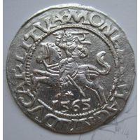 Полугрош Жигимонт Август 1565г.(аверс: нет монетного знака между L и SIGIS)