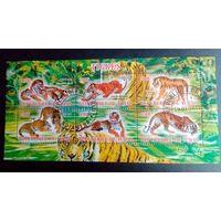 Чад 2013 Фауна Дикий мир Тигры.
