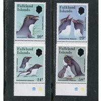 Фолклендские острова. Фауна. Хохлатый пингвин