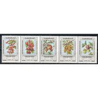 Флора Плоды Сирия 1974 год серия из 5 чистых марок в сцепке