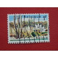 Бельгия 1967г. Флора.