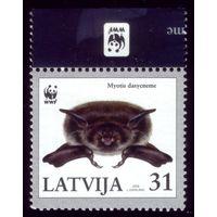 1 марка 2008 год Латвия Летучая мышь 728