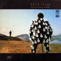 Pink Floyd, Delicate Sound Of Thunder, 2lp 1988