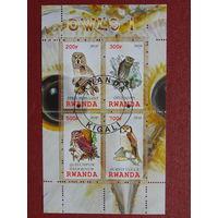 Руанда 2010г. Птицы.