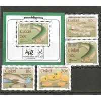1989 Южная Африка Сискей Рыбы
