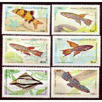Гвинея-Бисау  рыбы фауна