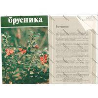 Буклет главкоопинформрекламы - брусника, 1984 г.
