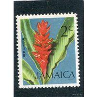 Ямайка. Флора. Красный имбирь