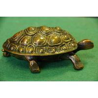 Шкатулка черепаха   ( длинна 12 см , ширина 7 см )