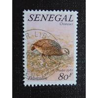 Сенегал 1982 г. Фауна.
