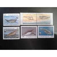 Туркменистан 1993 Каспийские тюлени WWF полная серия