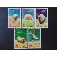 Корея 1977г. Морская фауна.