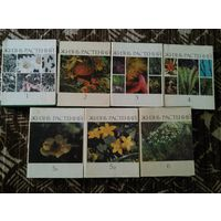 Жизнь растений 7 томов 1974г