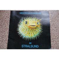 Штральзунд, морской аквариум