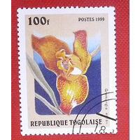 Того. Цветы. ( 1 марка ) 1999 года.