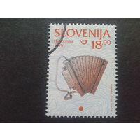 Словения 1999 стандарт, гармонь
