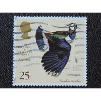 Великобритания 1996г. Птицы.