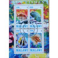 Рыбы, блок, Малави
