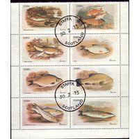 Малый лист 1973 год Шотландия О-в Стаффа Рыбы