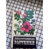 Лекарственные растения. Сбор, заготовка, применение 1984