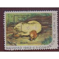Куба 1962г. Фауна.