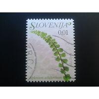 Словения 2009 стандарт, цветы