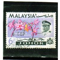 Малайзия. Джохор. Ми-157. Spathoglottis plicata.1965.