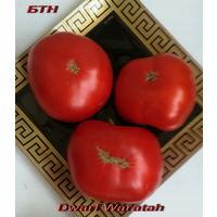 Семена томата Dwarf Waratah (Гном Варатах)