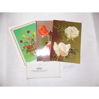 Набор открыток с цветами Польша. Сердечные пожелания. в упаковке