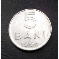 5 бани 1966 Румыния #07