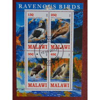 Малави 2013г. Птицы.
