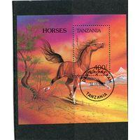 Танзания. Породы лошадей. Англо-нормандская верховая. Блок