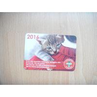 2016 Беларусь календарик котик