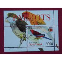 Восточный Тимор 2000г. Фауна.