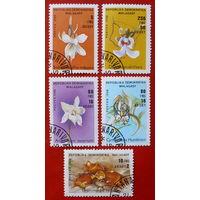 Мадагаскар. Цветы. ( 5 марок ) 1988 года.