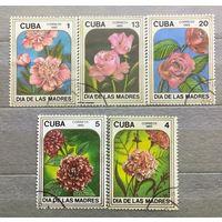 Куба.1985г. Цветы.