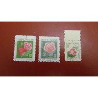 Вьетнам. 1980г. Розы